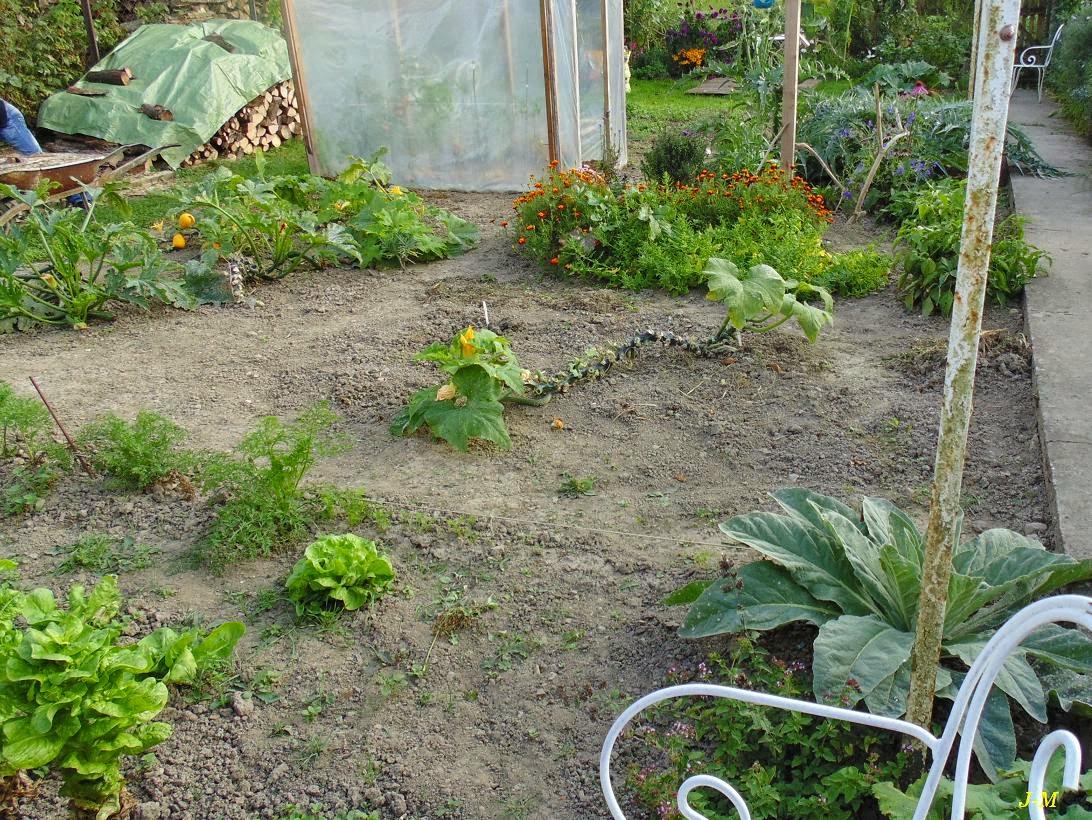 Quoi Mettre Au Potager En Septembre mon jardin en moselle: le potager en septembre
