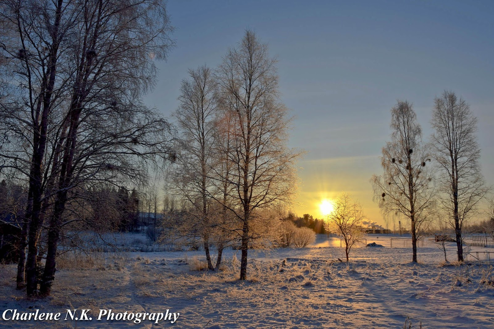 Winter: nature description, features and interesting facts 48