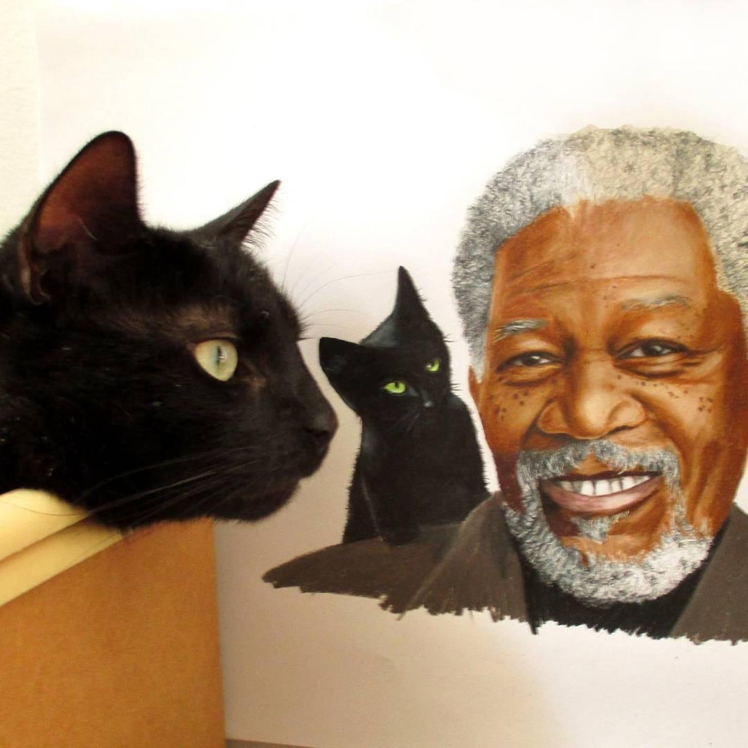 03-Morgan-Freeman-And-The Black-Kitten-Jasmina-Susak-Realistic-Animal-Drawings-with-Colored-Pencils-www-designstack-co