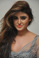 Actress Sony Charistha Latest Pos in Silver Saree at Black Money Movie Audio Launch  0031.jpg