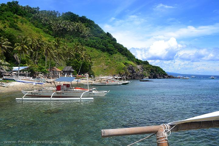 Rocky shore of Apo Island
