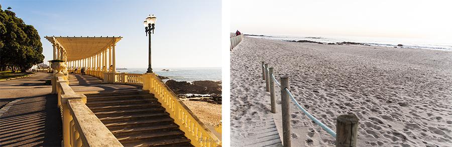 Oporto portugal de fin de 2012 a reyes de 2013 en - Banarse con delfines portugal ...