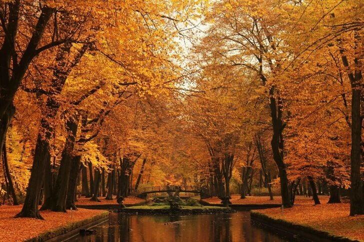 Mesmerizing Pictures Of Fall All Around The World