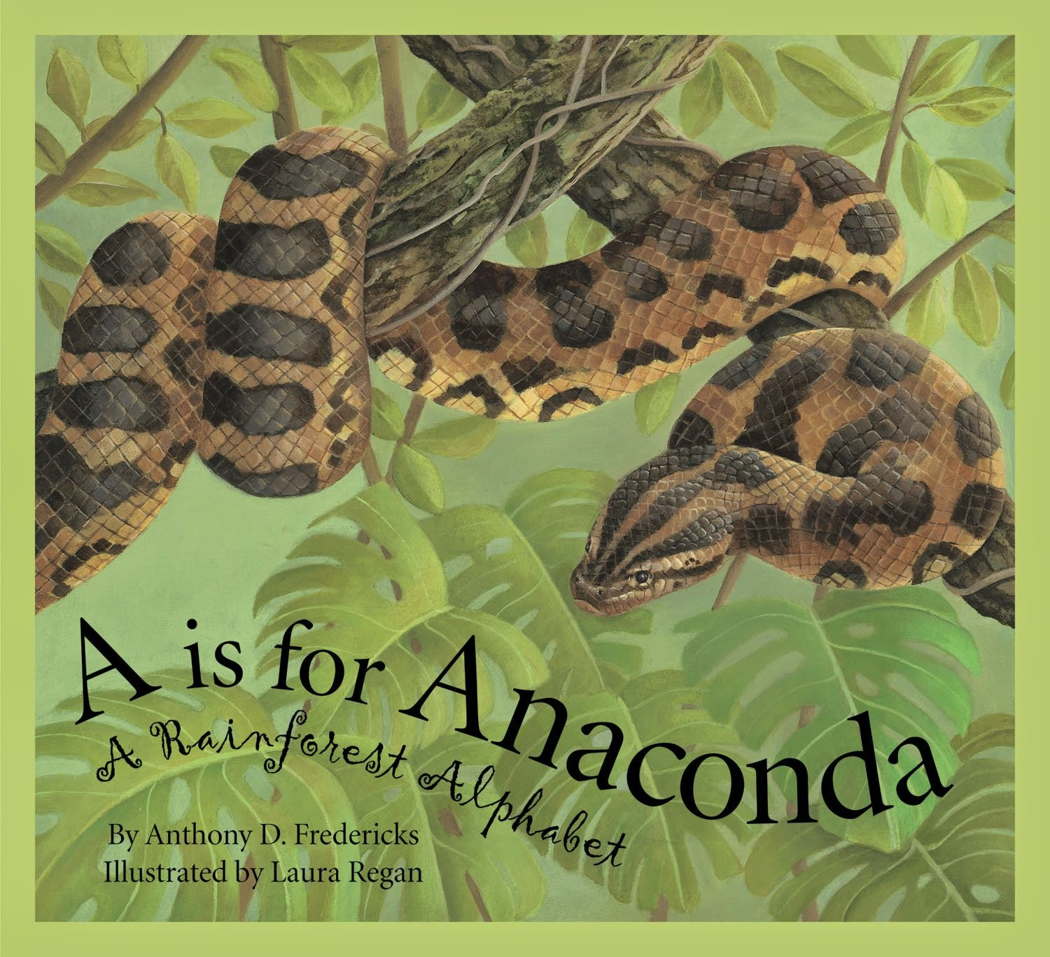 A is for Anaconda: A Rainforest Alphabet, part of book review list of jungle and rainforest books