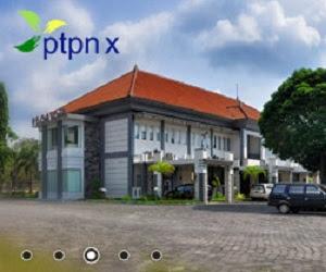 PTPN X (Persero)