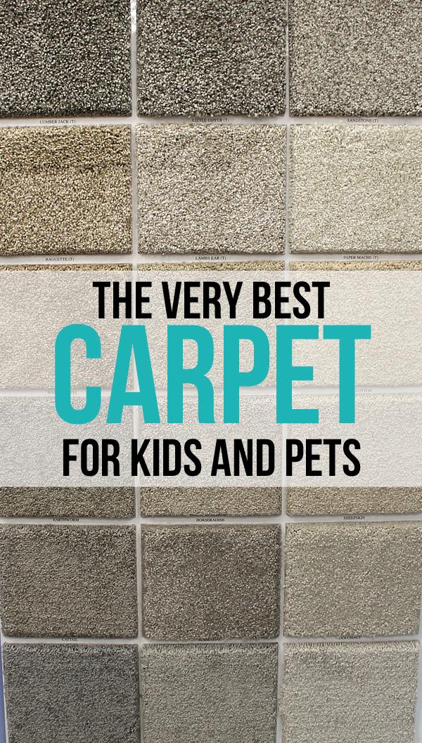 Best Carpet For Pets