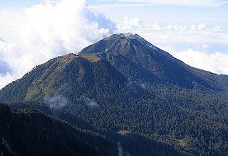 Jalur Pendakian Gunung Anjasmoro Jawa Timur