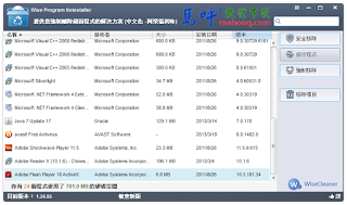 程式移除工具 Wise Program Uninstaller Portable 中文版免安裝