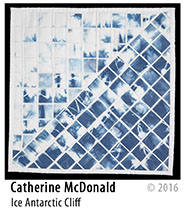 Catherine McDonald SAQA Auction