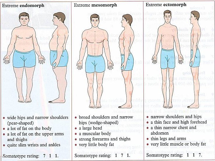 EXPRESS YOURSELF: BODY SHAPES FOR MEN