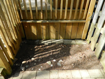 Riverdale Toronto Spring Cleanup Back Yard After by Paul Jung Gardening Services--a Toronto Organic Gardening Company