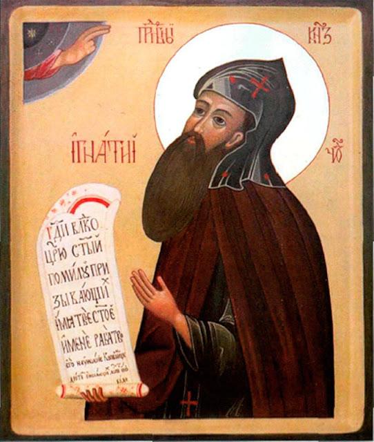 Прот. Григорій Дьяченко († 1903 г.): Временныя несчастія суть благодѣянія Божіи