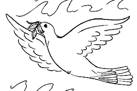 Cute Fly Pigeon Coloring Pages Printable
