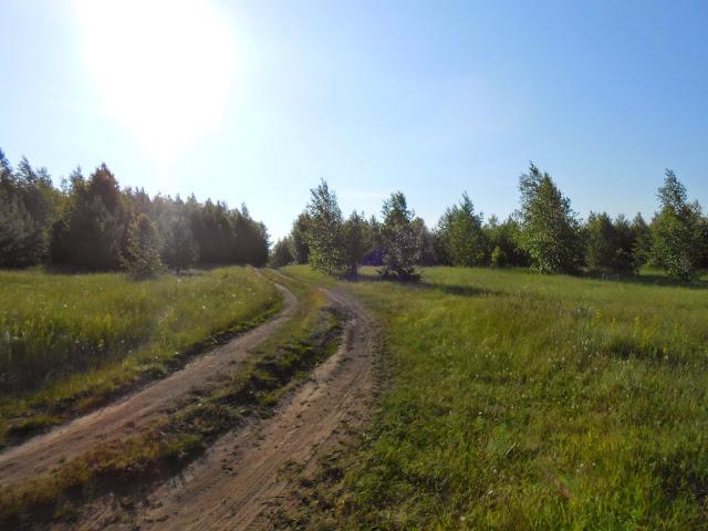 Дорога к берегу озера Иртяш
