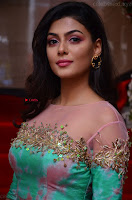 Anisha Ambrose sizzles in cute Green Anarkali Dress at Fashion TV F Club Saloon Launch ~  Exclusive 017.JPG