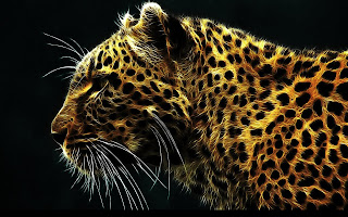 Abstract-animal-Jaguar-cheetah-wildlife-fantasy-image.jpg