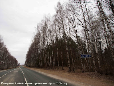 Псковская область фото Дно