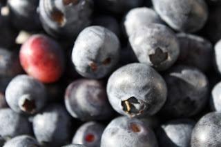 5 alimentos que protegem a nossa pele do sol - Mirtilos, framboesas ou amoras