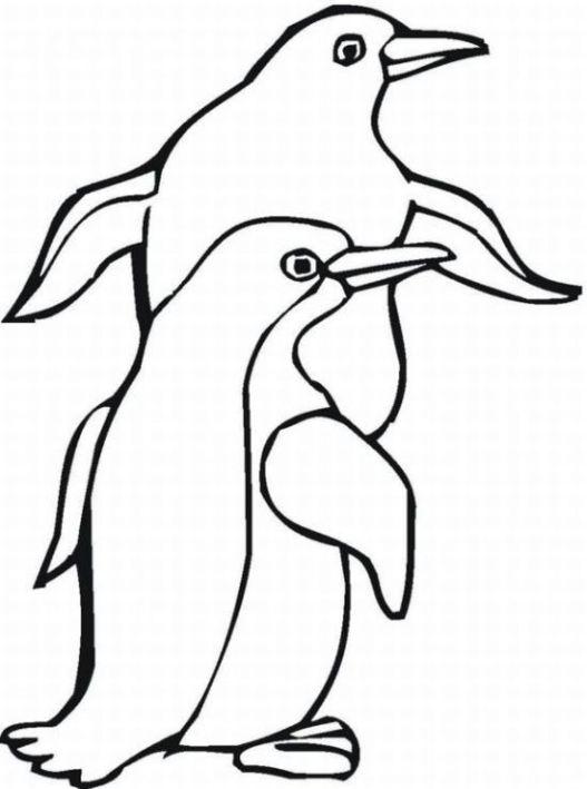 Los Pinguinos Para Colorear Imagui