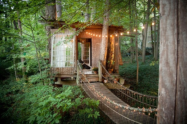 5 Houses In Trees That You Will Love 2