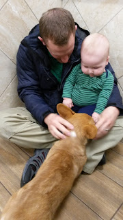 10 Month Old Baby Playing with Corgi Puppy