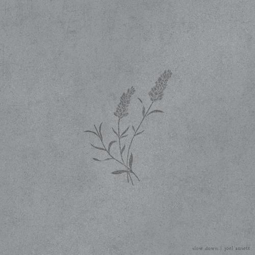 Joel Ansett Unveils New Single 'Slow Down'