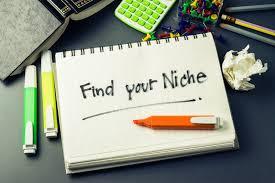 Niche untuk Blog kamu