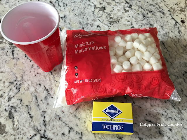 Marshmallow Toothpick Challenge - A fun game for a winter themed party