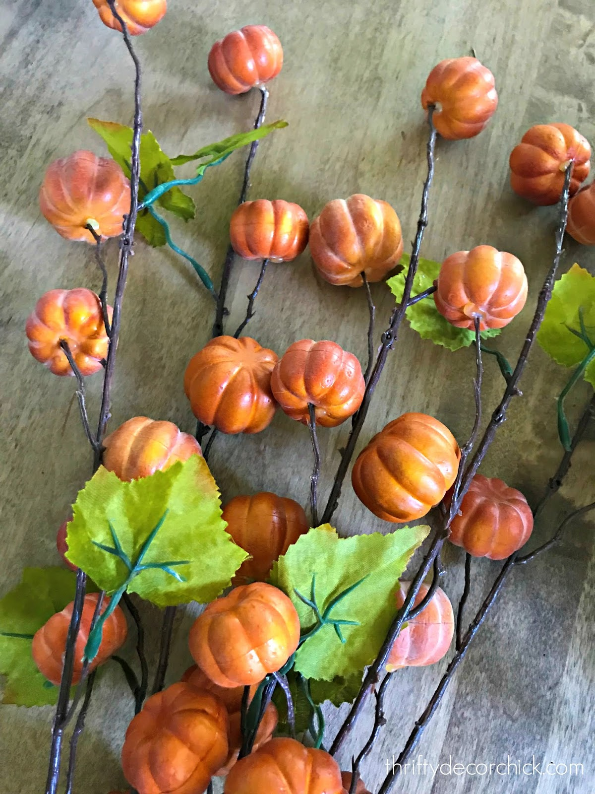 Tiny pumpkins on branches for decorating