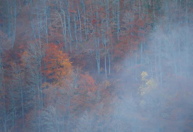 Espíritu de otoño – Iván Morán G-R