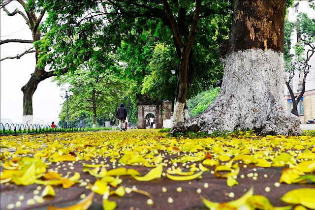 Hanoi's Autumn weather 2