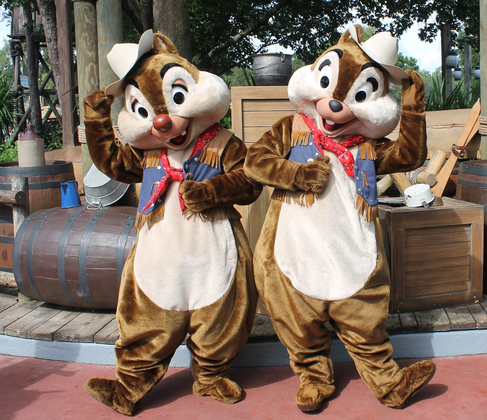 Unofficial Disney Character Hunting Guide Magic Kingdom