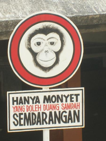 oh menawan   Hanya monyet yang boleh buang sampah