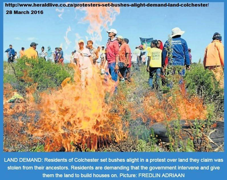 Land-grab campaign: Port Elizabeth, Colchester residents torched bushes 28 March 2016 - demanding a 62-hectare land site