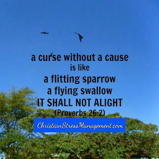 A curse without a cause is like a flitting sparrow, a flying swallow it shall not alight. (Proverbs 26:2)