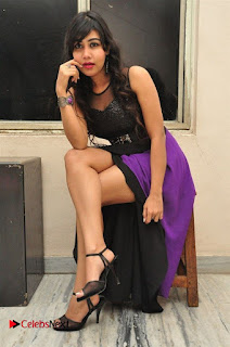 Telugu Actress Rachana Smith Stills at Money is Honey Audio Release  0051.jpg