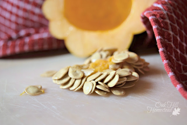 How to save seeds from an acorn squash.