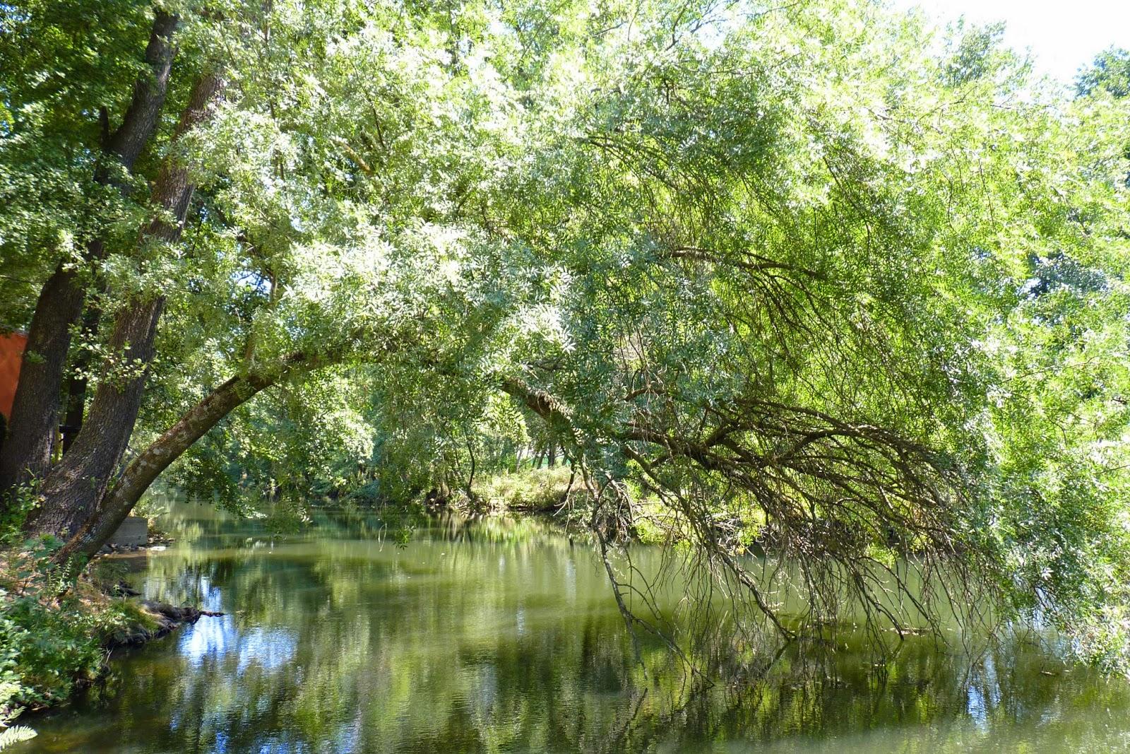 Río Jerte, Parque de la Isla.