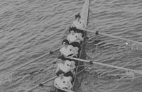 Alpha Ladies Amateur Rowing Club WEHORR 1954