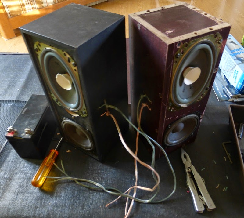 speakers with their wires