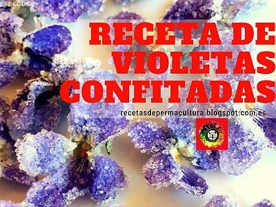 Receta de Violetas Dulces, flores confitadas delicadas al paladar