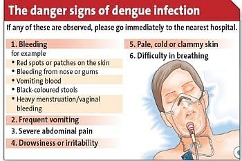 Marvelous Avoid Dengue This Rainy Season Pinoy99 News Daily Updates Ibusinesslaw Wood Chair Design Ideas Ibusinesslaworg