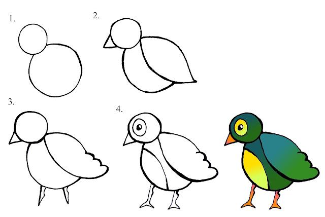 رسم عصفور للاطفال