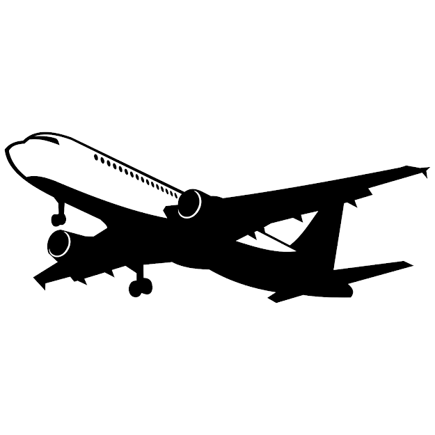 Full Size  Preview Airliner Vector