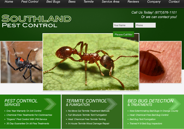 trusted pest control experts