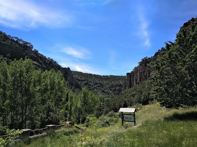 Barranco de la Hoz. Ruta El Rodenal