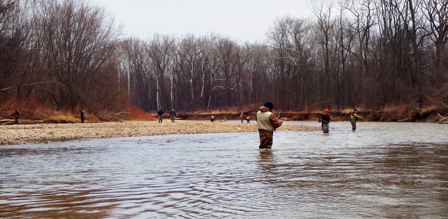 All things fishing the grand river was rockin for Grand river fishing