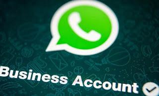 Spiegazioni WhatsApp Business