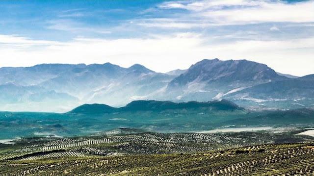 Los espectaculares cerros de Úbeda (Foto de Internet)