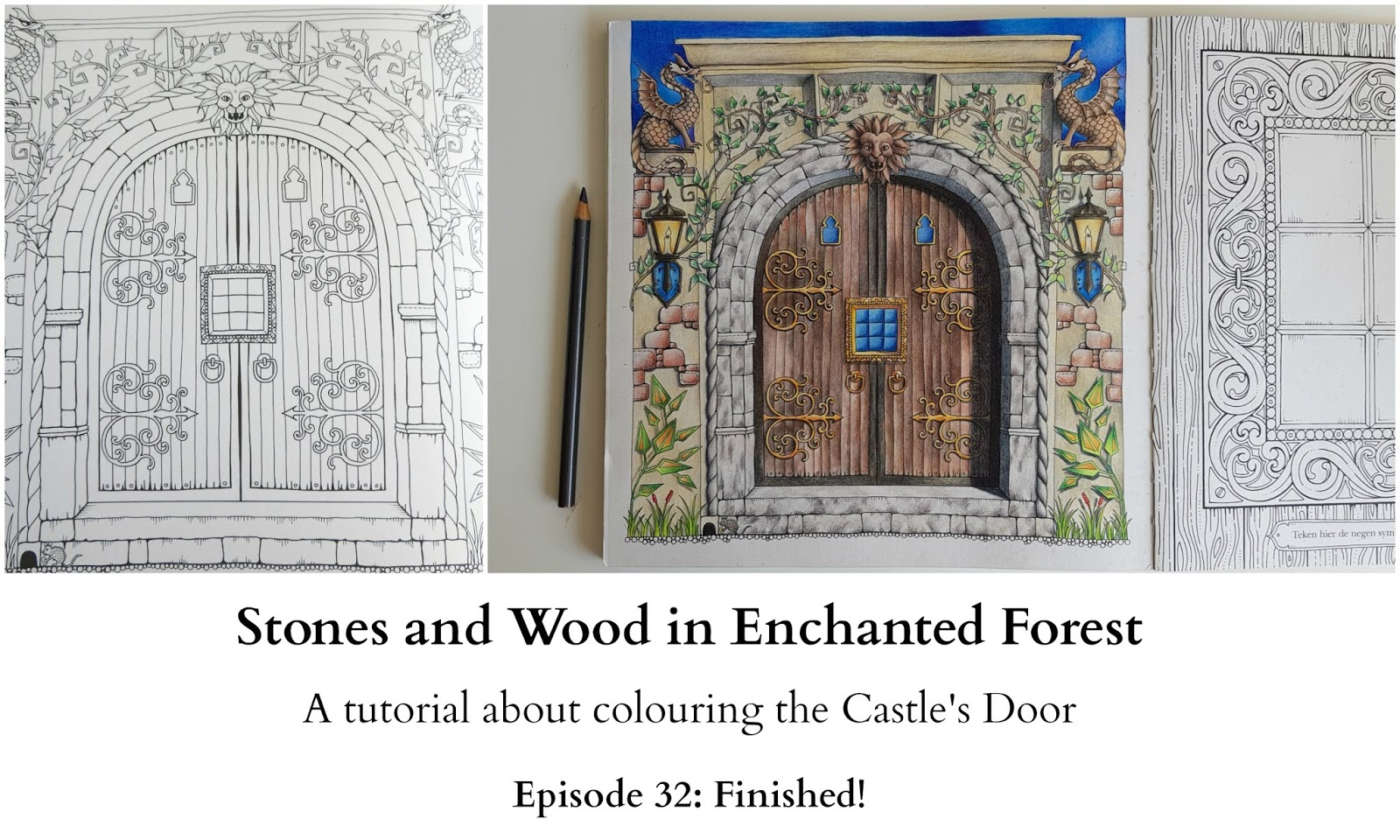 Stones And Wood In Enchanted Forest